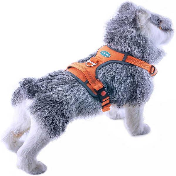 la mejor pechera para perros de españa