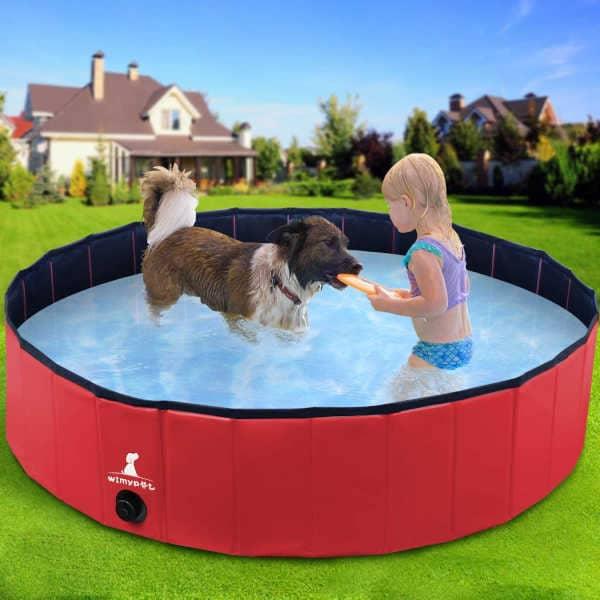 piscina para perro en españa