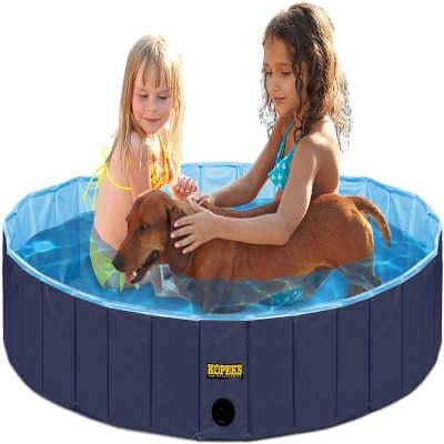 piscina para perros en españa